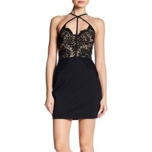 THE ROOM by Arc & Co Lace Black Bodycon Dress